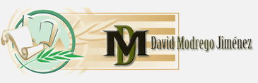 David Modrego logo